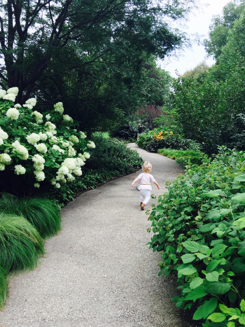 Adventures in Chicago Part 2, The MortonArboretum